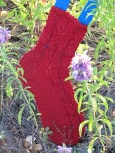 Chrysanthemum frutescens Socks