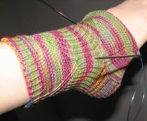 Muppet Sock 1