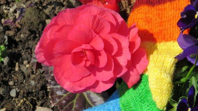 flower and knit sock